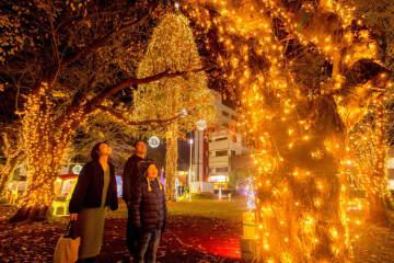イルミネーションで彩られた公園を散策する来場者=22日午後7時ごろ、三沢市