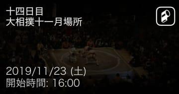 相撲 試合サマリー
