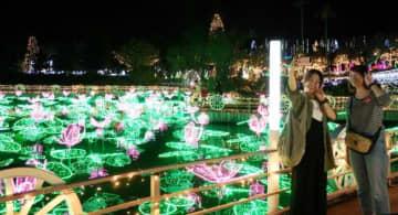 ハスの花と葉をモチーフにした電飾が浮かんだ池を背景に、写真を撮る来場者ら=23日、沖縄市・東南植物楽園