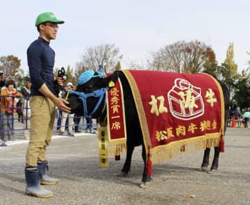 松阪牛の品評会で最高賞に選ばれた「いつこ」=24日、三重県松阪市