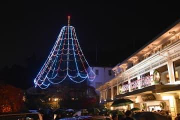 雨の夜を彩るクリスマスツリー