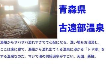 ながちさん(@onsennagachi)提供