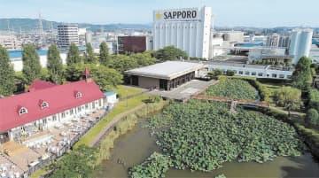 工場敷地内の緑地(左奥)とビオトープ園(右手前)