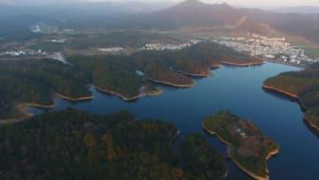 2千組以上の野生のオシドリが鴛鴦湖に飛来 江西省婺源県