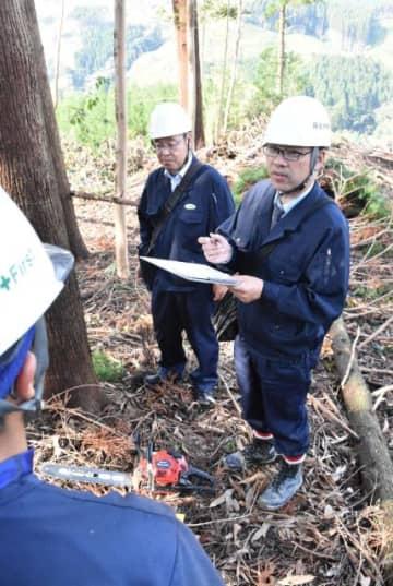 宮崎労働基準監督署の伐採現場パトロールで、安全対策などについて調査する職員=宮崎市