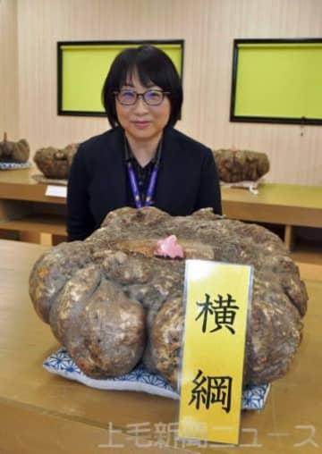 横綱に輝いた三木さんのコンニャクイモ