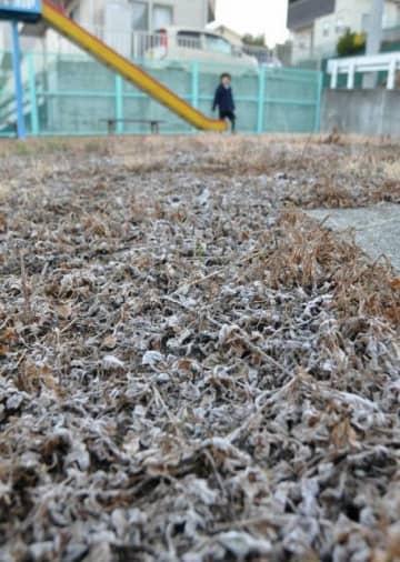 厳しい冷え込みで、うっすらと霜が降りた公園=29日午前7時8分、岡山市南区妹尾