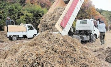 集積所に運び込まれた稲わら