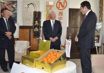 「日の丸みかん」の香港輸出を報告する日の丸柑橘共同選果部会の関係者ら=29日午後、県庁