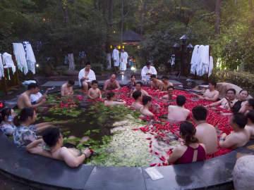 「おしどり鍋」の温泉が人気 観光客続々