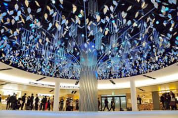 噴水がなくなり、開放感あふれる空間に光と音のシンボル「ウオーターツリー」がお目見えした。発光ダイオード(LED)照明で季節ごとに演出を変更し、地下でも四季を感じられるよう工夫している=3日、大阪市北区