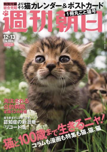 写真は、「週刊朝日」12月13日号(朝日新聞出版)
