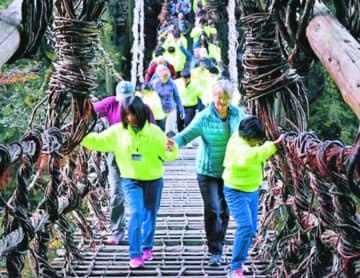 外国人観光客の手を引き橋を渡る児童生徒=三好市西祖谷山村の祖谷のかずら橋