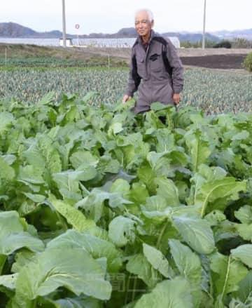野沢温泉村に送った野沢菜に手を添える吉田さん=11月下旬、甘楽町