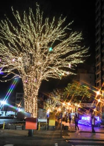 福島市のパセオ通りを彩る「光のしずくイルミネーション」