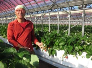 【イチゴ農園の敷地内に直売所「伊勢苺園」をオープンした倉野さん=伊勢市小俣町元町で】