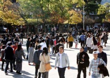 観光客が大幅に増え、来島者数が過去最多となる見通しの宮島