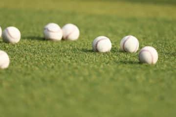 スポーツの中でも野球は記録との親和性が高いとされている