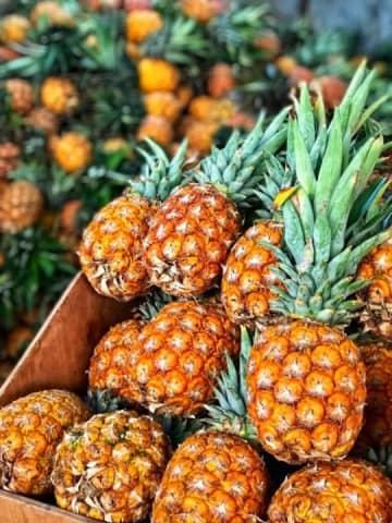 日本で好きなだけ果物を食べるのは「富をひけらかす」こと―中国メディア