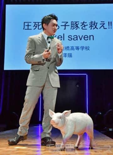 子豚の圧死を防ぐ仕組みを提案する中沢さん