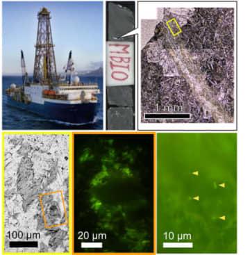 玄武岩を採取したジョイデス・レゾリューション号(左上)、得られた玄武岩サンプル(上中央)、顕微鏡による粘土鉱物部分(右上)、可視化された微生物(下3枚)。(写真:東京大学の発表資料より)