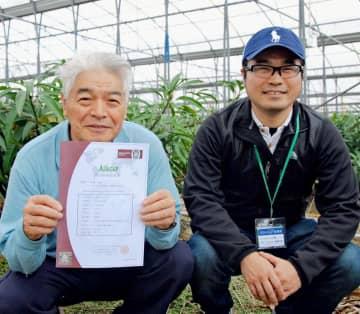 マンゴー農家で初取得 国際的安全認証「アジアギャップ」 沖縄から輸出目指し 画像