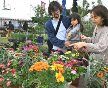 色とりどりの花を見る家族連れ=6日、沖縄市・農民研修センター