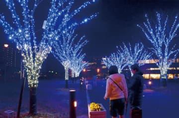 足を止めてイルミネーションを楽しむ通行人=三郷市の三郷中央駅前におどり公園