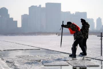 「氷の都」ハルビンの松花江で氷採取