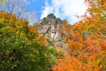 行縢山の紅葉は 岩峰と渓谷に彩りを添えてました(2019年12月)