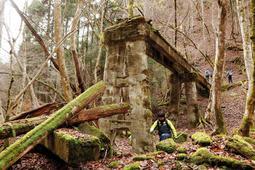 中音水渓谷で最大級の橋脚跡。昨年まで残っていた木製の橋脚が倒壊していた=宍粟市波賀町の音水国有林