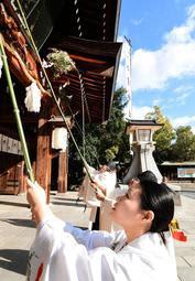 長いササ竹で正門のほこりを払う巫女=13日午前、神戸市中央区多聞通3、湊川神社(撮影・後藤亮平)