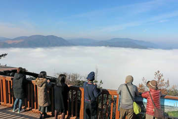 真っ白な朝霧に包まれた亀岡盆地(10日午前10時すぎ、亀岡市下矢田町・かめおか霧のテラス)