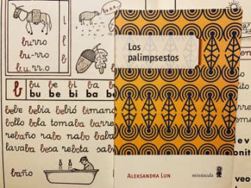 Interview with Aleksandra Lun, a Polish native who became a celebrated Spanish-language writer