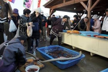 5周年を迎えた水俣漁師市で、いけすで泳ぐタイなどを買い求める来場者ら=水俣市