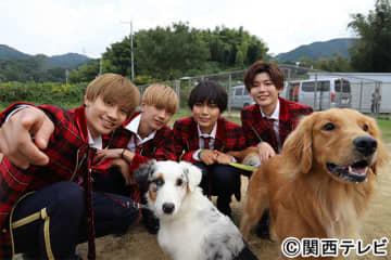なにわ男子が犬のしつけに挑戦! 訓練中、高橋恭平&藤原丈一郎はコントに専念!?