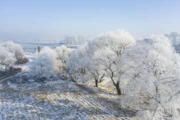 吉林省吉林市に霧氷出現 輝く冬景色