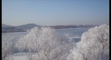 北国の江城、吉林市で美しい霧氷を観測