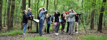 Bird watchers are at the Hawk Rise Sanctuary in Linden.