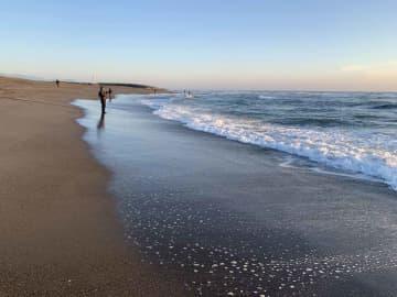 夜明け前から集まり、日が昇ると広いサーフに等間隔に釣り人が並び出す。