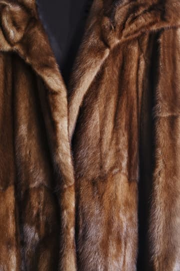 Brown Mink Fur Coat - Dreamstime/Dreamstime