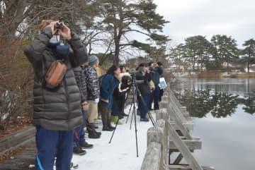 さつき沼で野鳥を観察する参加者