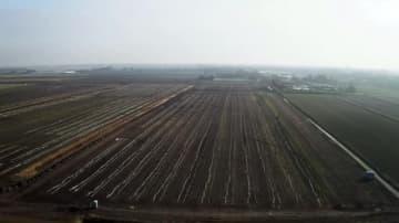 浙江正泰新能源、オランダ最大規模の太陽光発電所でグリッド接続成功