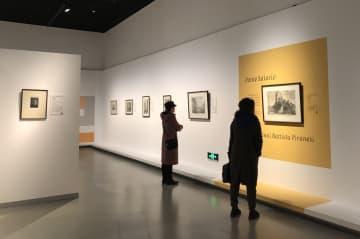 西洋美術の巨匠の「知る人ぞ知る作品」が一堂に 四川省成都市