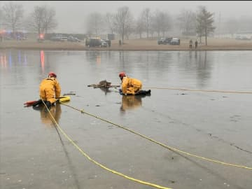 A deer was rescued from an icy pond in South Brunswick on Thursday morning. (South Brunswick Police Department/)