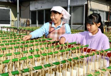 幸奈さんに凍み豆腐作りのノウハウを伝えるトモ子さん(左)