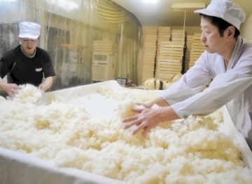 蒸し米からこうじを作る杜氏の渡会社長(右)=20日、鶴岡市の渡会本店