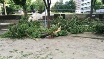 【ニュースで見る2019年(5)】令和元年は大型台風「大当たり」の困った1年