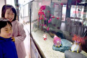 ネズミの名を持つ生き物を紹介する企画展=福井県坂井市の越前松島水族館