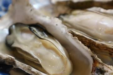 意外と知らない牡蠣の生態